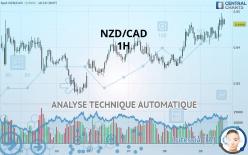 NZD/CAD - 1 tim
