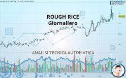 ROUGH RICE - Giornaliero