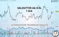 SALZGITTER AG O.N. - 1 uur