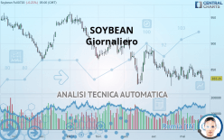 SOYBEAN - Diário