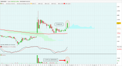 CRESCENT - Daily