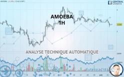 AMOEBA - 1H