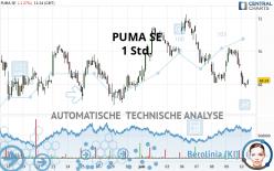 PUMA SE - 1H