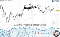 NATURGY - 1H