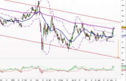 CARREFOUR - Daily