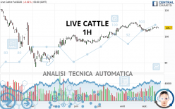 LIVE CATTLE - 1H