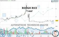 ROUGH RICE - 1 uur