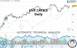 LIVE CATTLE - Daily