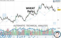 WHEAT - Daily