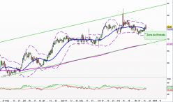 NEXTERA ENERGY INC. - Diario