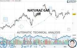 NATURAL GAS - 1 Std.