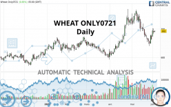 WHEAT ONLY0721 - Daily