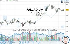 PALLADIUM - 1 uur