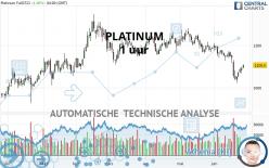PLATINUM - 1 uur