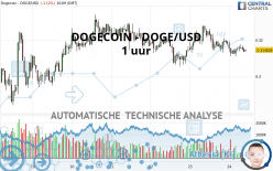 DOGECOIN - DOGE/USD - 1 uur