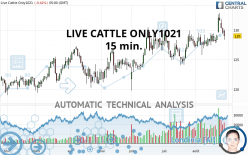 LIVE CATTLE ONLY1021 - 15 min.