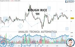 ROUGH RICE - 1H