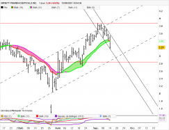 INFINITY PHARMACEUTICALS INC. - Daily