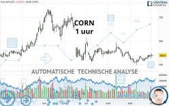 CORN - 1H