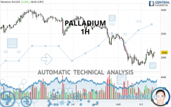 PALLADIUM - 1 Std.