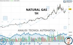 NATURAL GAS - 1 uur