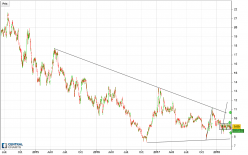 CAMECO CORP. - 4H