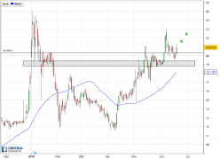 MEDRELEAF CORP ORD - Daily