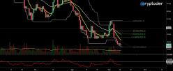 Bitcoin Cash - BCH/EUR - Daily