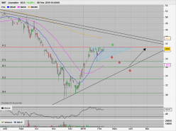 WIIT - Daily