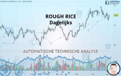 ROUGH RICE - Dagelijks