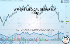 WRIGHT MEDICAL GROUP N.V. - Diario