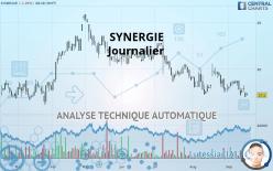 SYNERGIE - Journalier
