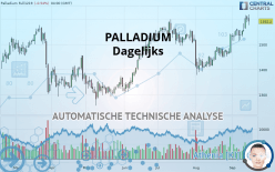 PALLADIUM - Täglich