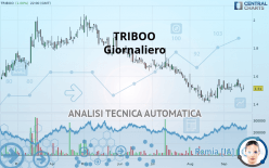 TRIBOO - Daily