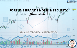 FORTUNE BRANDS HOME & SECURITY - Giornaliero