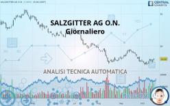 SALZGITTER AG O.N. - Täglich