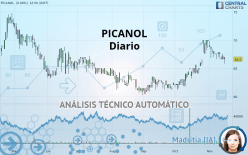 PICANOL - Diario