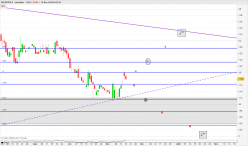 MICROPOLE - Daily
