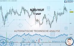 NZD/HUF - 1 小时