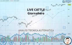 LIVE CATTLE - Giornaliero