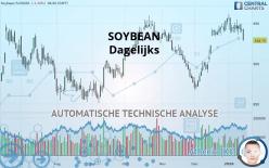 SOYBEAN - Dagelijks