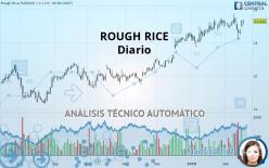 ROUGH RICE - Diario