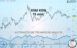 DSM KON - 15 分钟