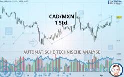 CAD/MXN - 1 小时